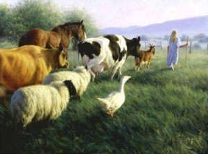 Christianity and Veganism: A Commonsense Connection @ Aberdeen Social Centre
